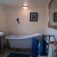 Slipper bath with shower, ideal for families with young children
